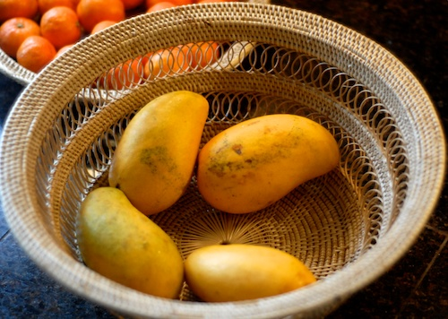 ataulfo champagne mangoes in a wicker basket with oranges in the background
