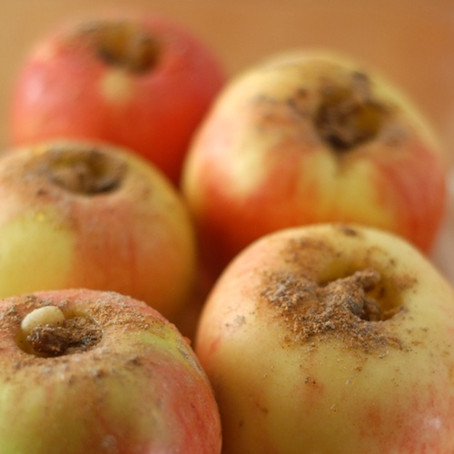 Pink Lady apples shown stuffed with walnuts, raisins, and spices