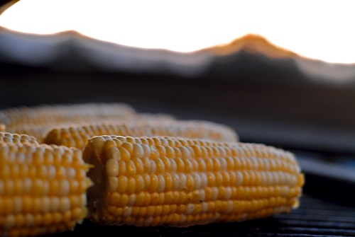 corn ready to grill