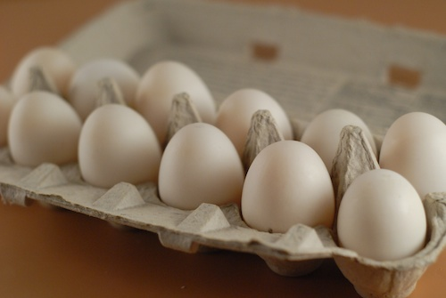 a dozen duck eggs in an egg caron