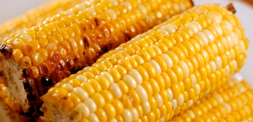 grilled corn ready to eat