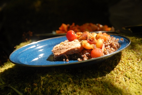 salmon, cherry peach compote, and red quinoa on a blue enamel plate set on a mossy rock