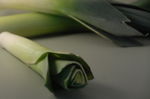 whole leeks shown against a gray background